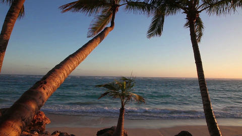 Sunrise in Paradise Stock Video Footage