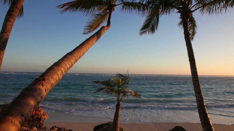 Sunrise In Paradise stock footage