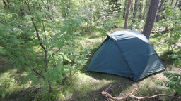 tent in forest Stock Video Footage