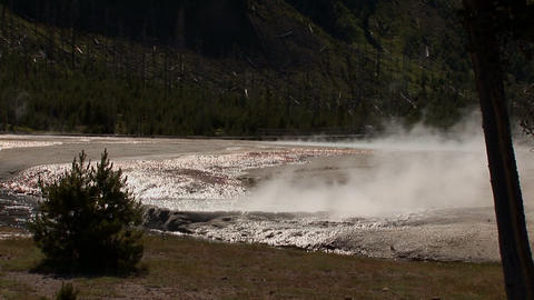 Geyser in Yellowstone National Park Stock Video Footage