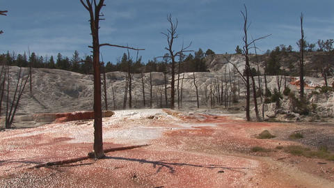 Mammoth Hot Springs, Yellowstone National Park Footage