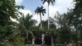 Casino Campeste park Footage