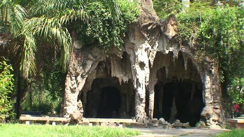 Casino Campeste park cave Footage