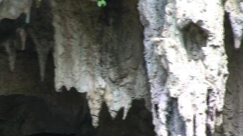 Casino Campeste park cave close up Stock Video Footage