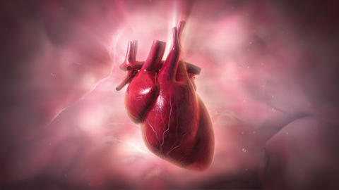 Heartbeat Animation