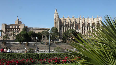 7fy 6View of the Cathedral of Santa Maria of Palma Stock Video Footage