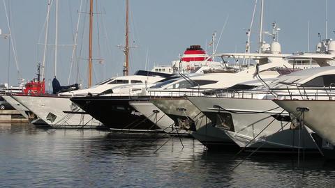 Luxury pleasure boats in a marina Stock Video Footage