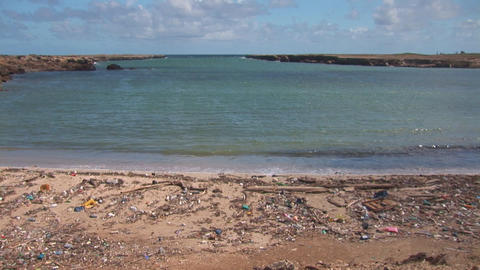 Pollution on beach on Bonaire Footage