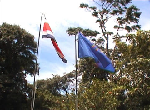 Costa Rican flag Stock Video Footage