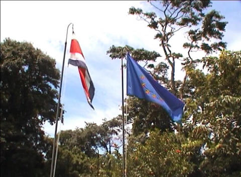Costa Rican flag Footage