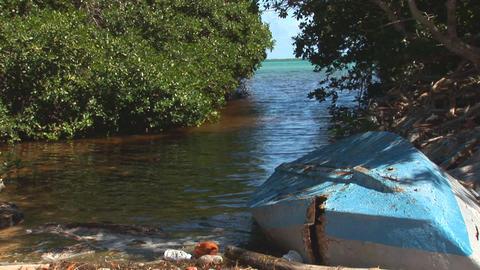 47 b old rowboat mangrove Footage