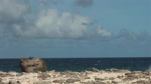 Rough coast on Bonaire Footage