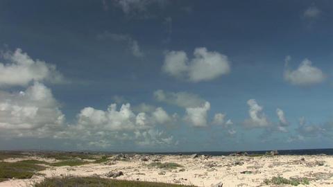 Rough coast on Bonaire Stock Video Footage
