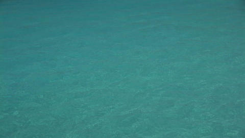 Swimmers on Curacao Stock Video Footage