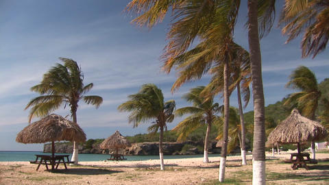 Tropical beach Stock Video Footage