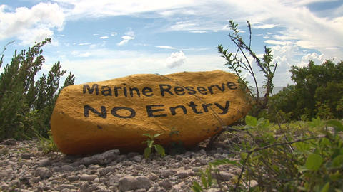Marine reserve Stock Video Footage