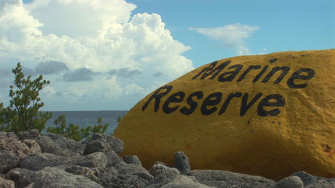 Marine reserve Stock Video Footage