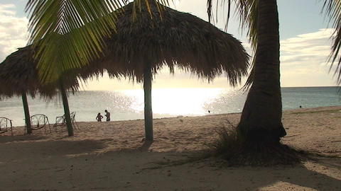 Trinidad Playa Ancón beachview palmtree and paras Footage
