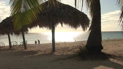 Trinidad Playa Ancón beachview palmtree and paras Footage