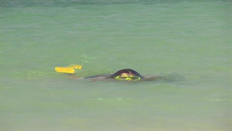 Girl snorkeling Stock Video Footage