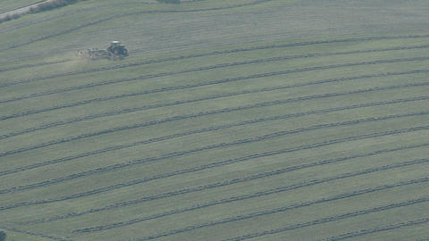 Tractor turning grass to make hay in summer Stock Video Footage