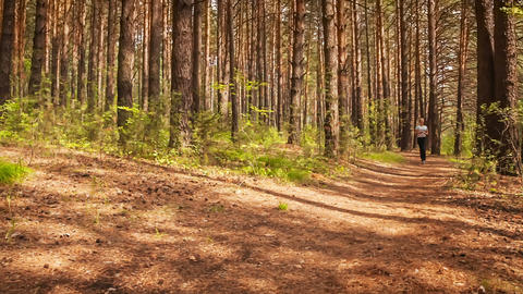 Jogging in wood Stock Video Footage