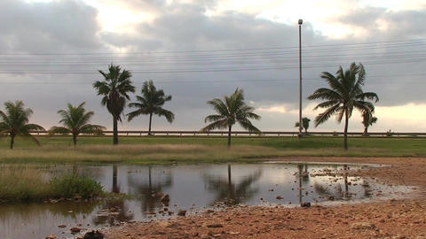 Cuba Street with cars at a pond Stock Video Footage