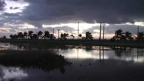 Cuba Sunrise at a pond Stock Video Footage