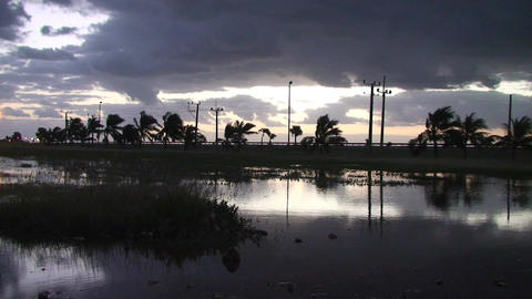 Cuba Sunrise at a pond Footage