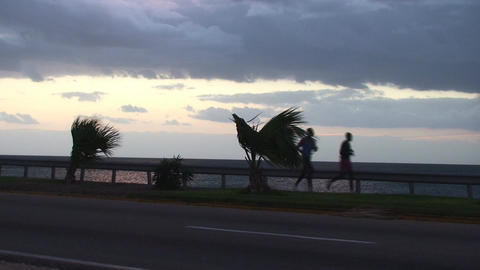 Cuba Sunrise street with cars and runners Stock Video Footage
