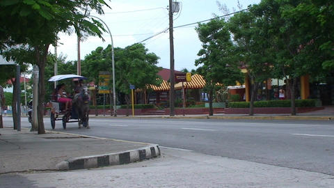 Varadero horsecar passing by on the street Footage