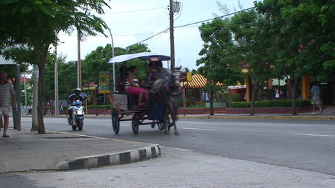 Varadero horsecar passing by on the street Stock Video Footage