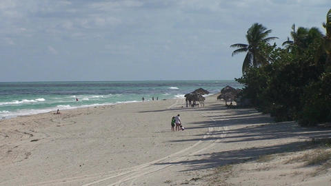 Varadero Palmtrees and beachview 3 Stock Video Footage