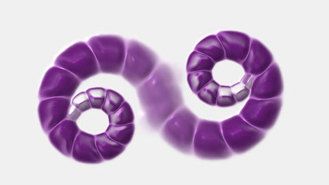 swirl chain,snake & nematode,invertebrates Animation