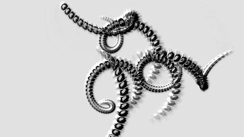 spiral black invertebrates body and swirl stripe wire,DNA chain Animation