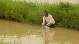 Thai Man Fishing in a Pond with a Net Stock Video Footage