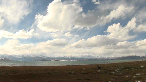 Pan View on Karakul Lake Tajikistan Stock Video Footage