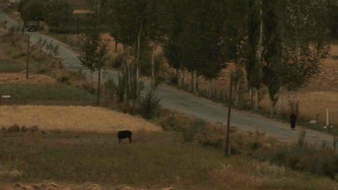 View on Roadside Tajikistan Stock Video Footage