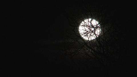 Full moon Stock Video Footage