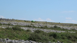 Burren Landscape 3 Stock Video Footage