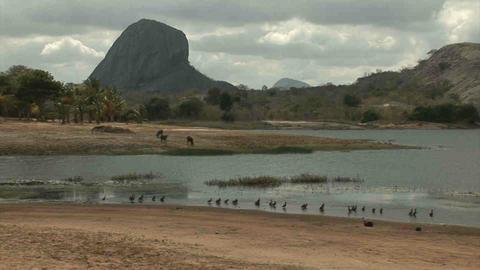 Landscape in Mozambique Stock Video Footage