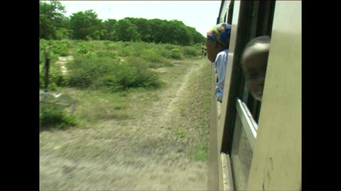 Train Woman watching Zimbabwe Stock Video Footage