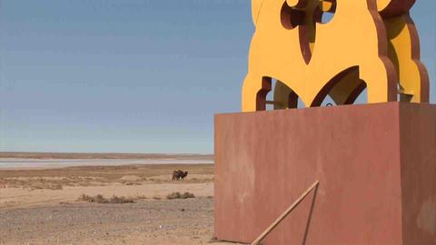 Monument Tilt Camels Kazakhstan Stock Video Footage