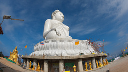 Big Buddha Stock Video Footage
