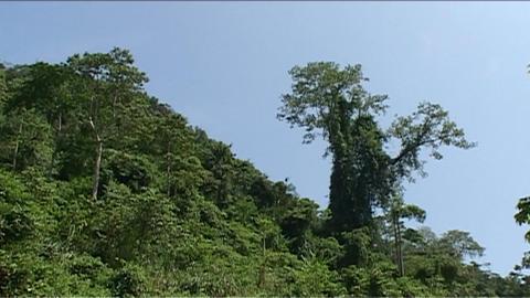 Vang Vieng, Karst hill landscape Stock Video Footage