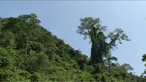 Vang Vieng, Karst hill landscape Footage