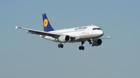 Lufthansa Airbus A 319 airplane landing 11018 Stock Video Footage