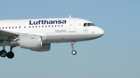 Lufthansa Airbus A 319 airplane landing 11018 Footage
