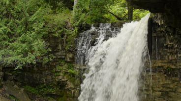 Hilton Falls Waterfall Medium Top 00180 Stock Video Footage