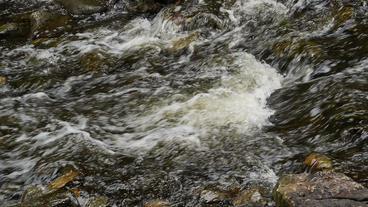 Hilton Falls Waterfall River Closeup 00184 Stock Video Footage